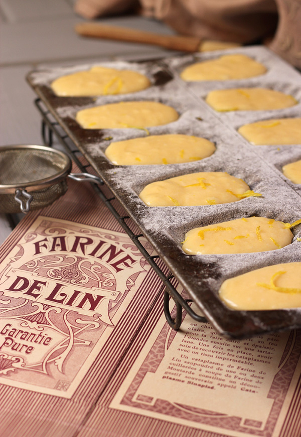 French-style madeleines ready to cook in vintage tin