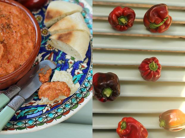 Lebanese Muhammara red bell pepper dip