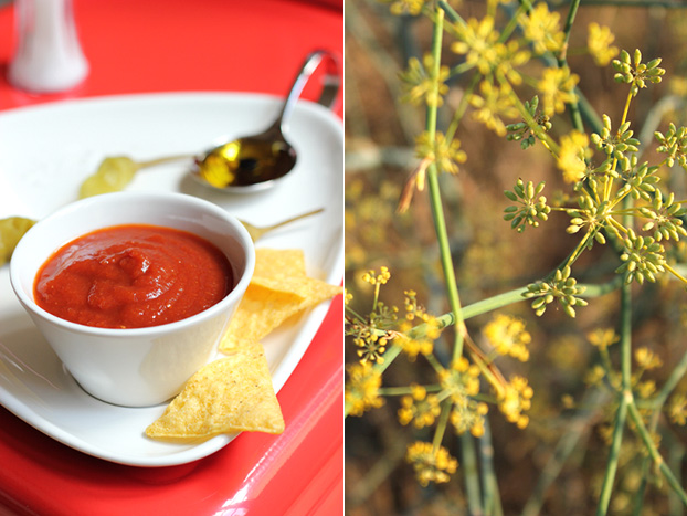 Homemade tomato passata or ketchup with fennel seed